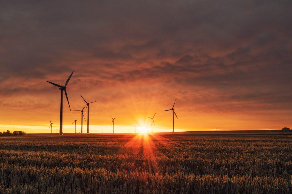 Vinkraftverk i solnedgången