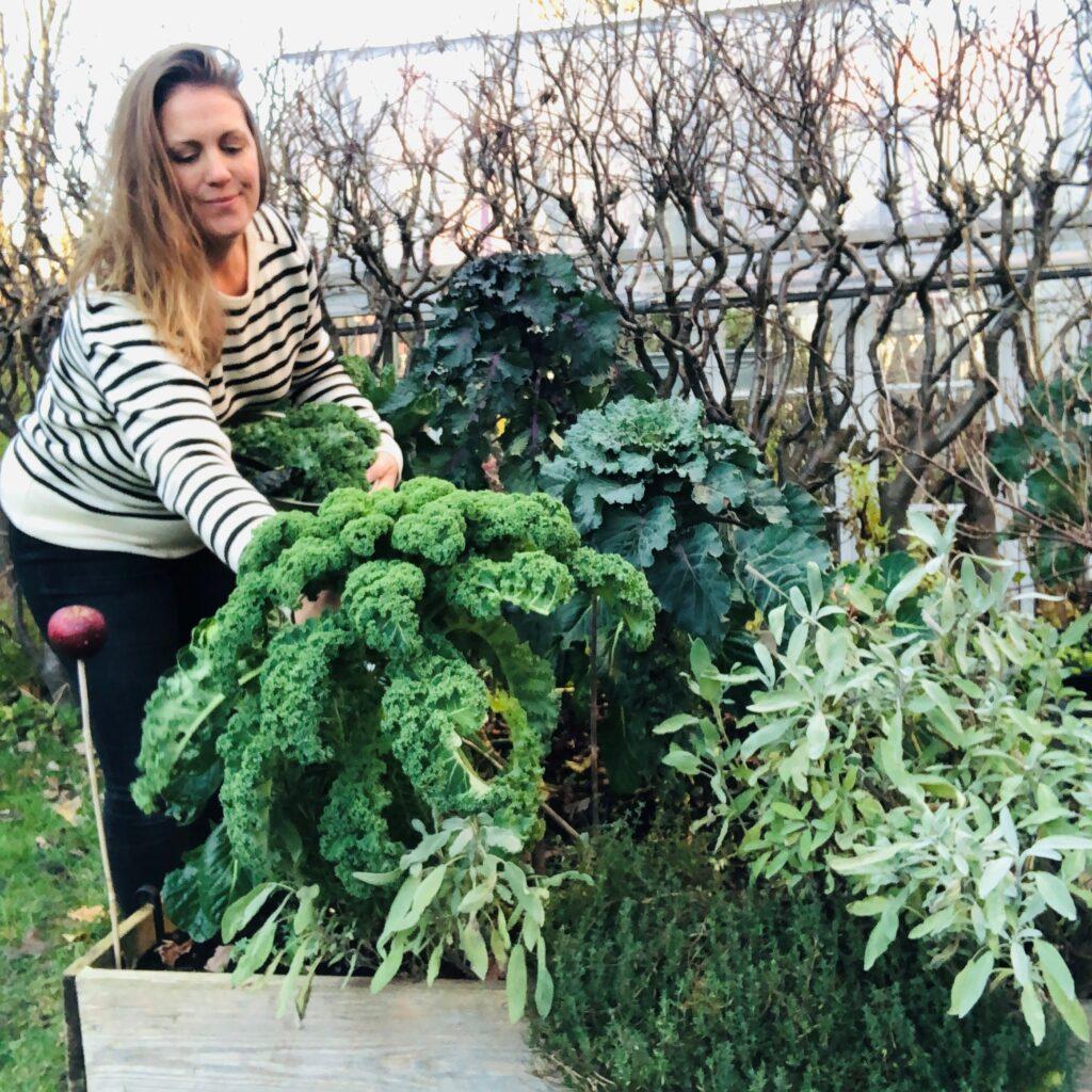 Levahållbart Maria Mehlin i sin trädgård där hon skördar grönkål